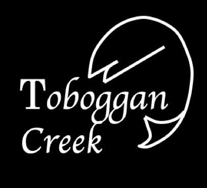 toboggan-creek-steelhead-assessment