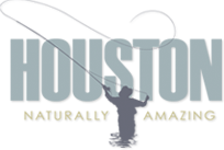 district-of-houston